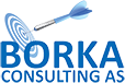 Borka Consulting