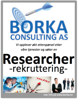 Borka Consulting Rekruttering